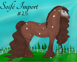 Soife Import 25 by NativeWolf330