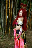 Dynasty Warriors - Diao Chan by Xeno-Photography