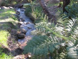 Lovely little creek by GrumpySnapper