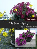 The flowerpot pack by LunaNYXstock