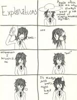 Explanations by Flip-Side-of-Sanity