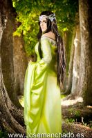 Arwen From Rivendell by MakaCrossWalker