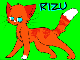 For Rizu~ QwQ by tobiokageyama