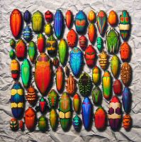 Chromatic Entomology V by CristinaSamsa