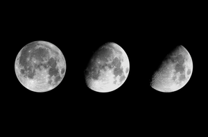 Moon Phases by JennHolton