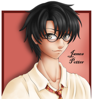 HP - James by sassie-kay