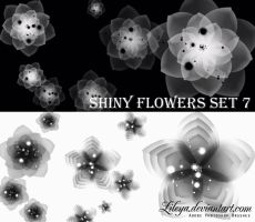 Shiny Flowers - set 7 by Lileya
