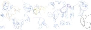 lion drawings by hibbary