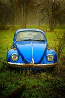 VW Beetle by Csipesz