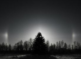 Halo Over The Spruces by DeingeL