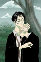 Harry and Draco by The1stTrickster