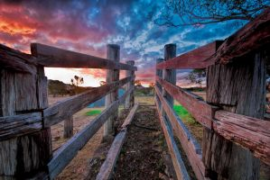 Cattle ramp sunset by GeoffSporne