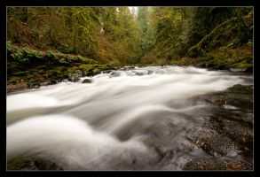 Cedar Creek by futureplug