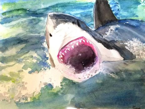 Great white water color by Fire-Redhead