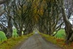 The Kingsroad by Nergling