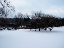 Snowscape by PrisonOfMyMind