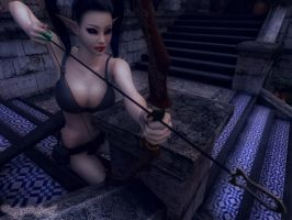 Archer of the Albae by FantasyErotic