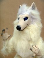 Arctic Wolf Room Guardian Face by AnyaBoz
