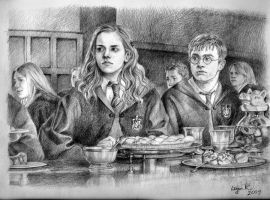 Harry and Hermione by liga-marta