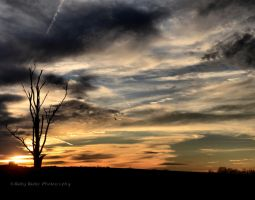 Alone on the Prairie2 by RobyRidge