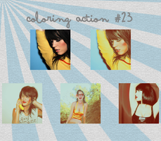 Action 23 by revallsay