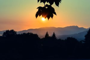Sunset at Burnaby Mountain by dashakern