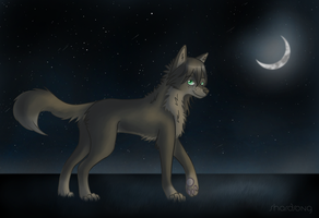 Fields of Moonlight by ShardSong