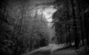 tristesse hivernale 3 by deadforest17