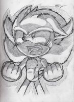 Super Sonic by SonicTheDerp