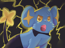 SHINX USED RAGE by Cherkivi