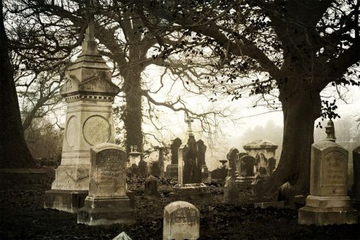 Morning Mourning IV by touch-the-flame