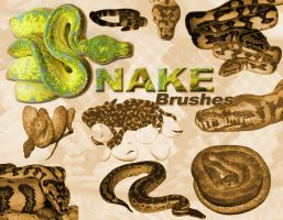 snakes by Thorston