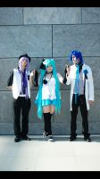 Camellia group by BellaHime