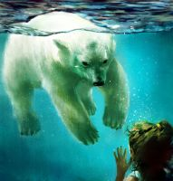 polar bear and me by gvc060905