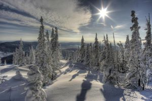 Siberian Day by Beauty4ever