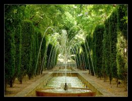 Green And Cool Paradise - Palma - Mallorca by skarzynscy
