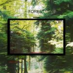 Forest by Momez