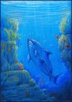 Back to the Surface (Ecco the Dolphin) by Liris-san