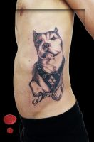 Rednose Pitbull Tattoo by loop1974