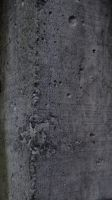 Texture 2 - Wall by Allyx-Stock
