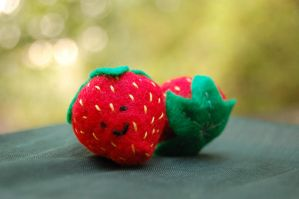 Strawberries by melliloquence