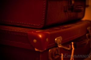 Old trunks - Day 12. 12/01/13 by oEmmanuele