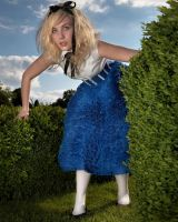 Alice by Midnite-1743
