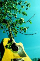 Bleu Sky Guitar by LIFEisMUSIC