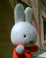 Miffy in Manchester by miffystravels