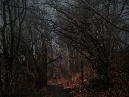path by suffer1