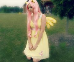 Fluttershy by SuzakuLover8