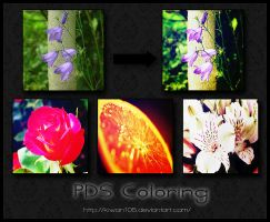 Summerflower PDS Coloring by Kiwan105