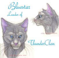 Bluestar Faces by MudstarMord-Sith