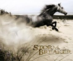 Storm Breaker by Haikuxx